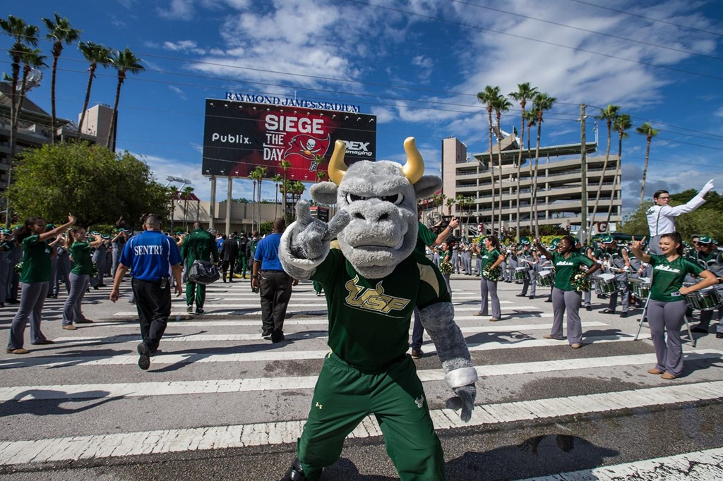 Image result for usf football tailgate